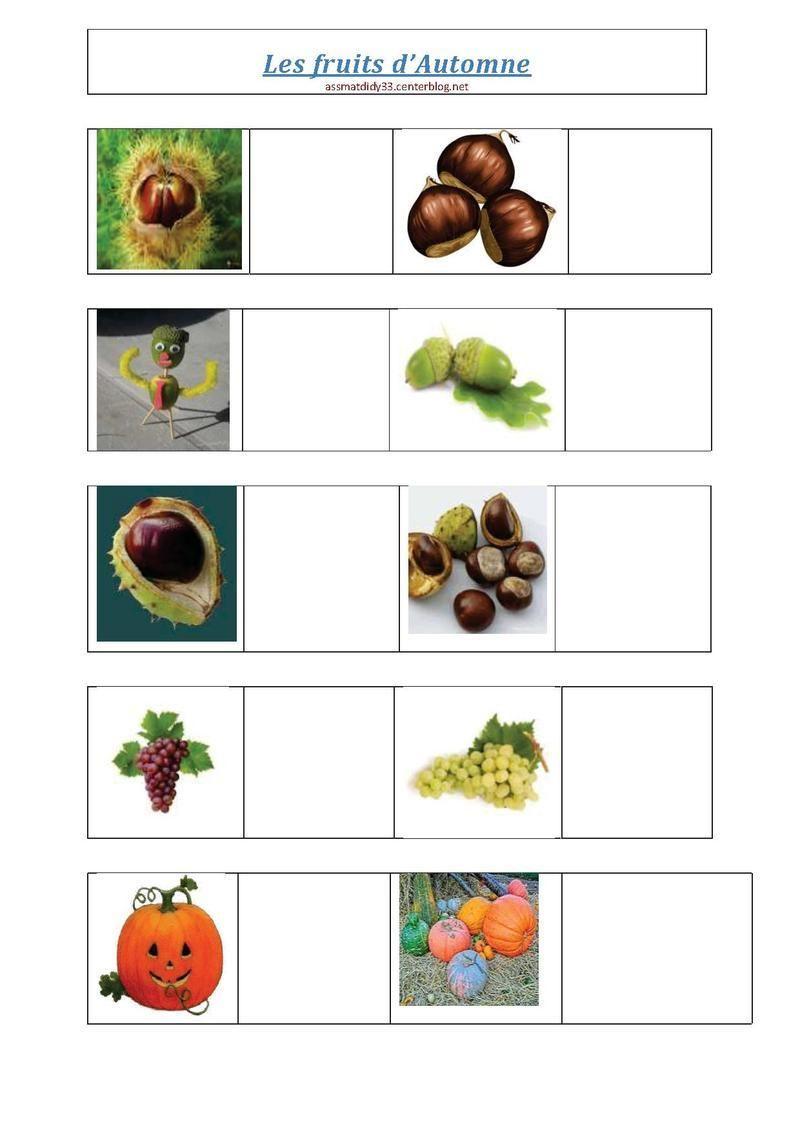 Les fruits d 39 automne fruits d 39 automne maternelle - Fruits automne maternelle ...